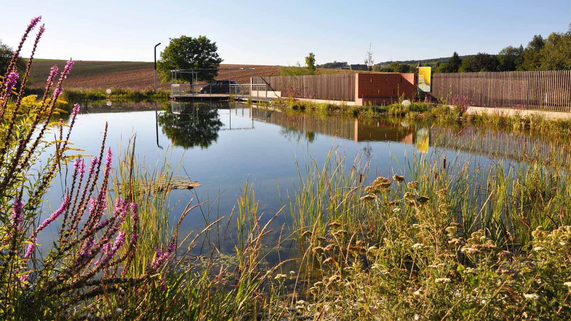 landschaftsplanung gartengestaltung biotop terrasse weidendom